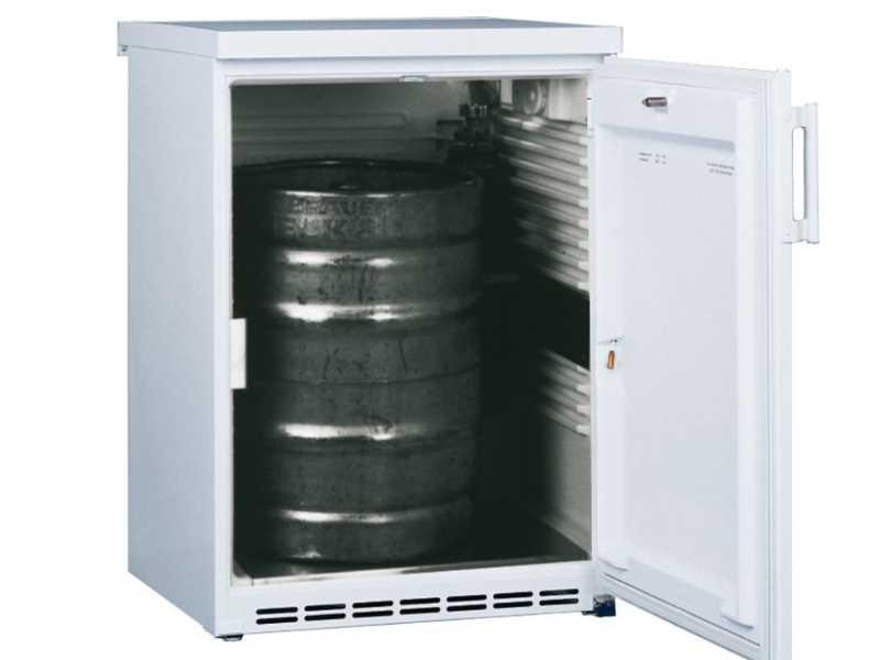 Kühlschrank Klein 50 Liter : Mini kühlschrank test die besten mini kühlschränke im vergleich